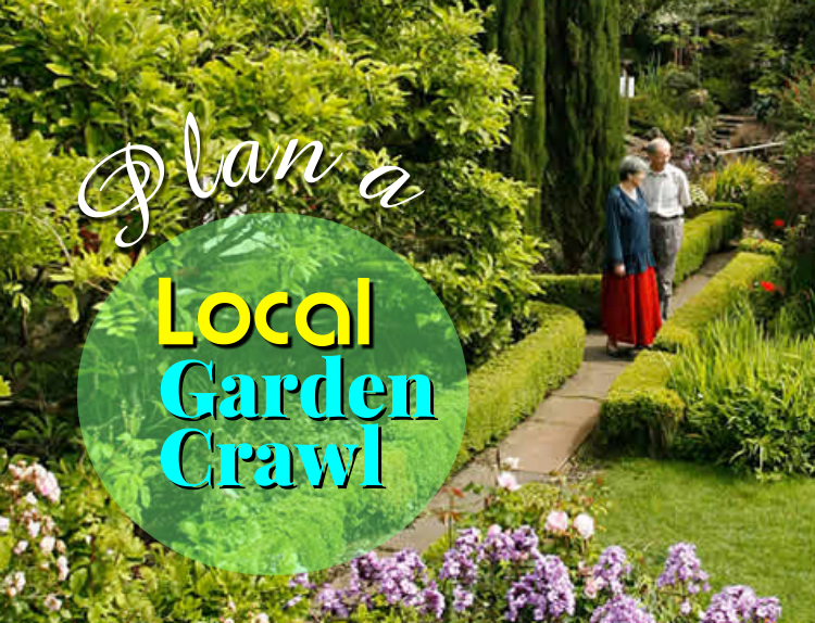 Local Gardens boast Beauty in all 4 Seasons