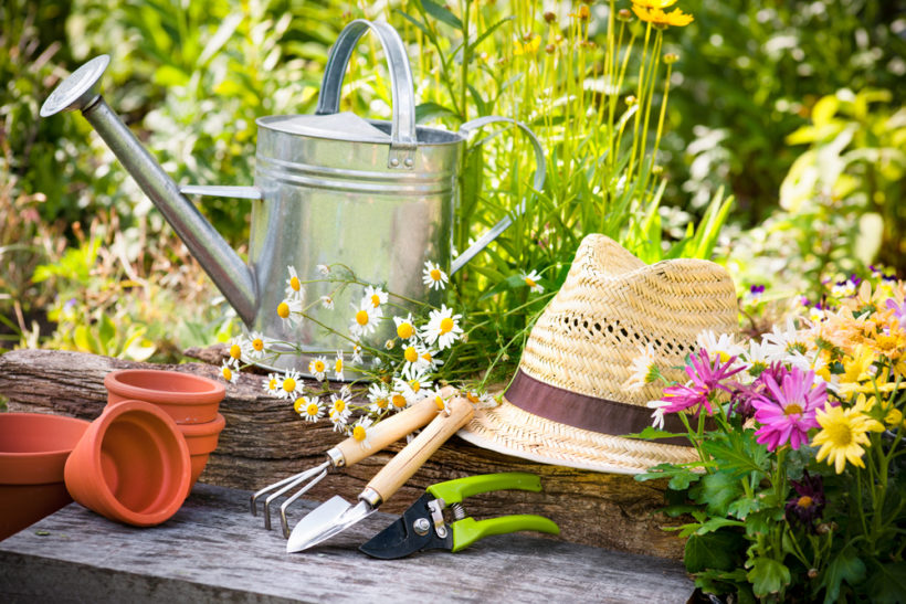 Planning your Outdoor Spaces this Spring